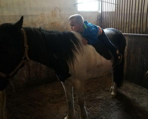 Na konju